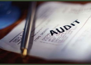 auditing-services-250x250